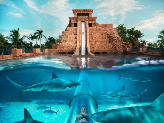 The Leap Of Faith, Atlantis Paradise Resort, the Bahamas (Nguồn ảnh: addtobucketlist)