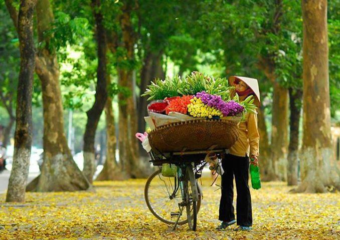 http://beetours.vn/images/tpnoidia/Ve-may-bay-khuyen-mai-di-Ha-Noi.jpg